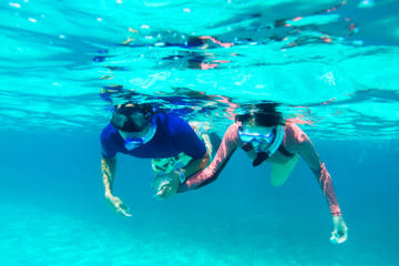 st kitts shore excursion kayak and snorkel adventure tourtipster com