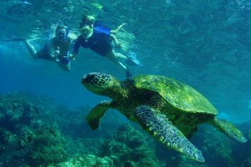 St Maarten Private Sightseeing and Snorkeling Cruise
