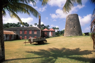 St Nicholas Abbey Tour in Barbados