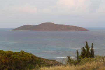 St Thomas Full-Day Sightseeing Tour to Buck Island, Honeymoon Beach and ABI Beach Bar