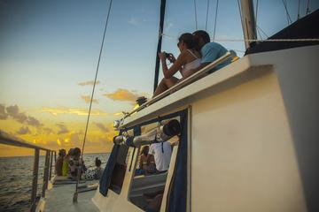 Sunset Party Cruise in St Lucia
