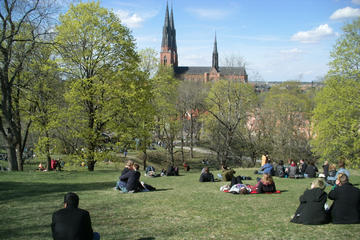 Swedish Lifestyle and Private Walking Tour of Uppsala