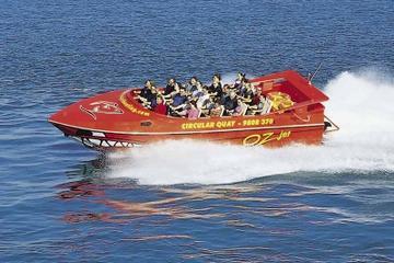 Sydney Shore Excursion: Sydney Harbour Jet Boat Thrill Ride: 30 Minutes