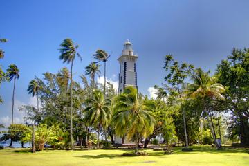 Tahiti Island Tour Including Venus Point, Grotto Caves of Maraa and Vaipahi Gardens