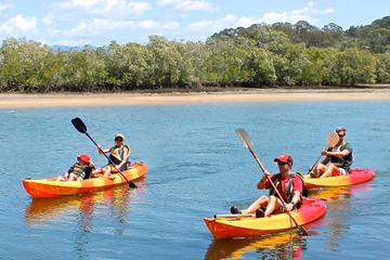 Tallebudgera Creek Kayaking Tour Including Burleigh Head National Park and David Fleay Wildlife Park from the Gold Coast