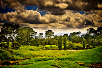 Tauranga Shore Excursion: Lord of the Rings Hobbiton Movie Set Tour Including Rotorua Sightseeing