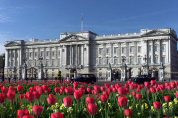 The Royal London Tour including Buckingham Palace