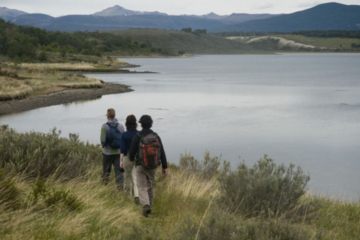 Tierra del Fuego Eco-Adventure: Beagle Channel Canoeing, Penguin Colony and Gable Island