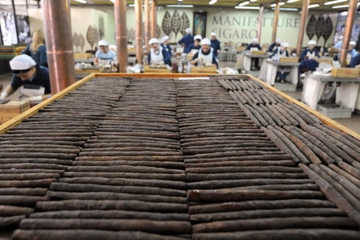 Toscano Cigar Factory Tour in Lucca