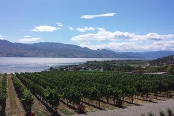 Tour and Taste Okanagan's Wine Country