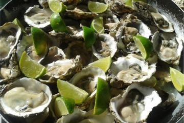 Tour Oyster Experience in Florianópolis