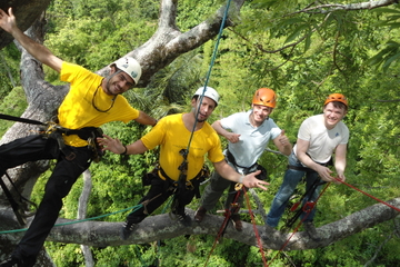 Treetop Climbing in Manaus