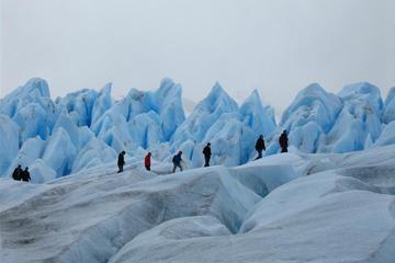 Trek The Glacier of Perito Moreno