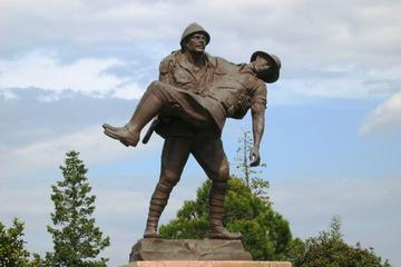 Troy And Anzac In 1-Day From Istanbul