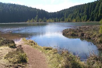 Twin Lakes Half-Day Tour from Ponta Delgada