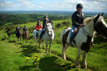 Two-Hour Horseback Mountain Trail Ride in Tipperary