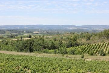 Unique Carcassonne Winery visit