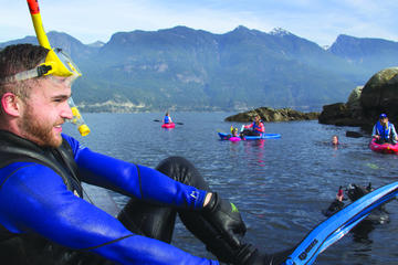 Vancouver Sea Life Cruise: Snorkel and Kayak with Seals