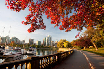 Vancouver Shore Excursion: Vancouver City Sightseeing