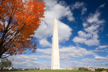 Viator Exclusive: Washington Monument Skip-the-Line Admission with DC Landmarks and Memorials Tour