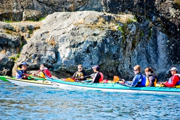 Victoria Harbour Kayak Tour