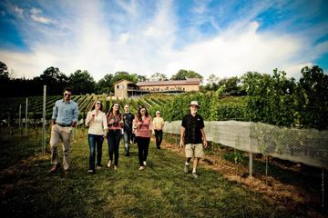 VIP Private Wine Tour with Lunch from Harrisburg
