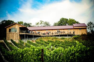 VIP Private Wine Tour with Lunch in Hershey