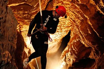 Waitomo Caves Adventures
