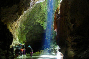 Waitomo Caves and Rotorua Day Trip from Auckland