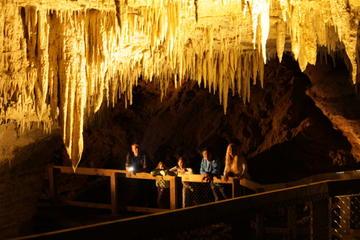 Waitomo Glowworm Tour at Footwhistle Cave