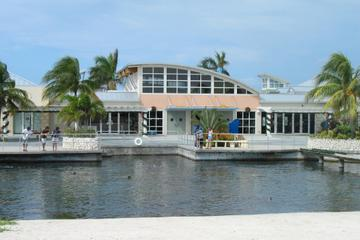 West Grand Cayman Highlights Tour