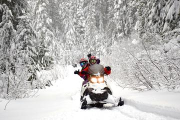 Whistler Backcountry Snowmobile Family Tour