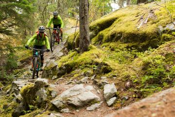 Whistler Half-Day Mountain Bike Tour