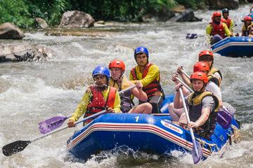 Whitewater Rafting with Elephant Trekking from Phuket