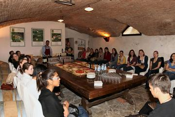 Wine Tasting and Bike Tour Around the Florentine Hills