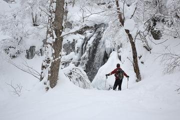 Winter White Forest and Frozen Waterfalls in Takayama with Snowshoeing