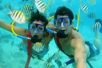 Xel-Ha All Inclusive Day Trip from Cancun