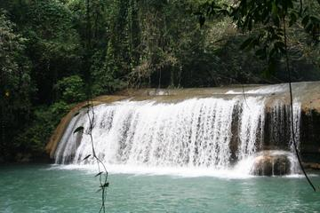 YS Falls Tour from Negril