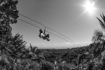 Zipline Adventure in El Limón