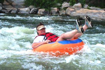 Zipline Canopy plus Jungle River Tubing from Falmouth