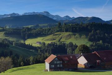 Zurich Super Saver: Swiss Countryside Day Trip plus Zurich Highlights Tour